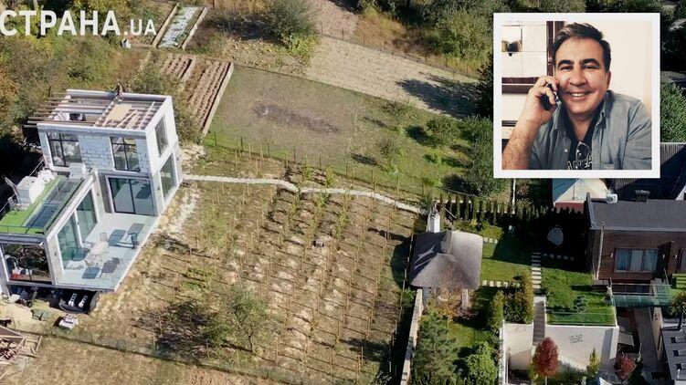 На втором участке под Киевом у Михо разбит виноградник и возводят третий дом